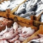 To combat illegal fishing, feds propose <b>seafood</b> traceability program